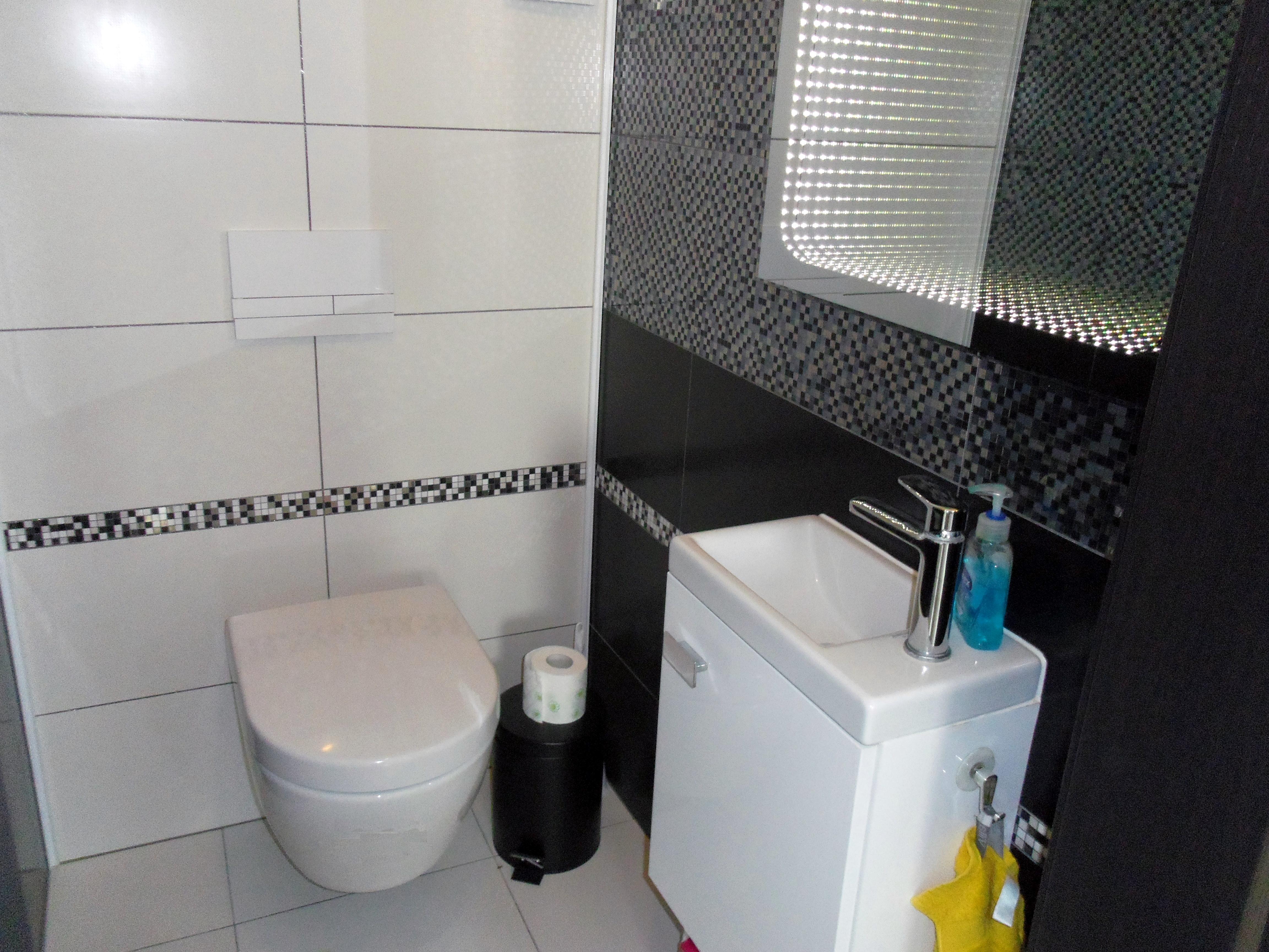 Toaleta I Jej Aranzacja Projekt Dom