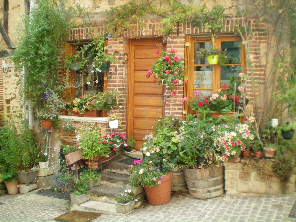 kwiaty we Francji