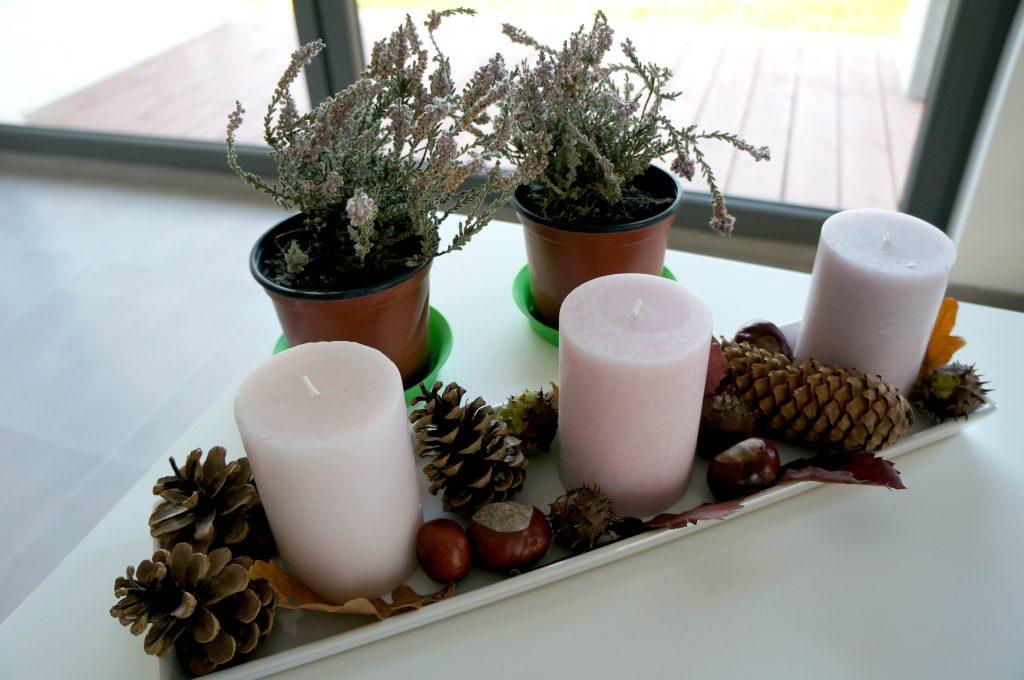 jesienny stoik na stół