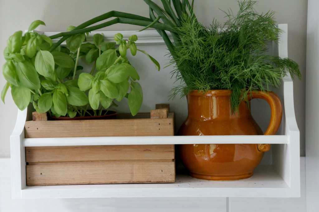 półka na zioła do kuchni