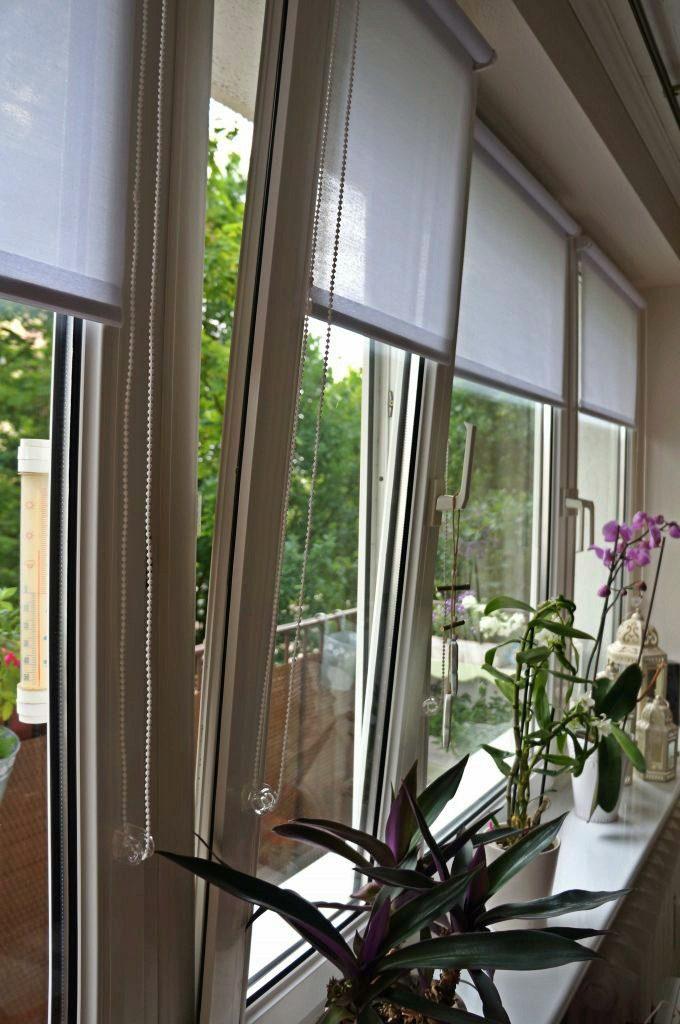 rolety w oknach