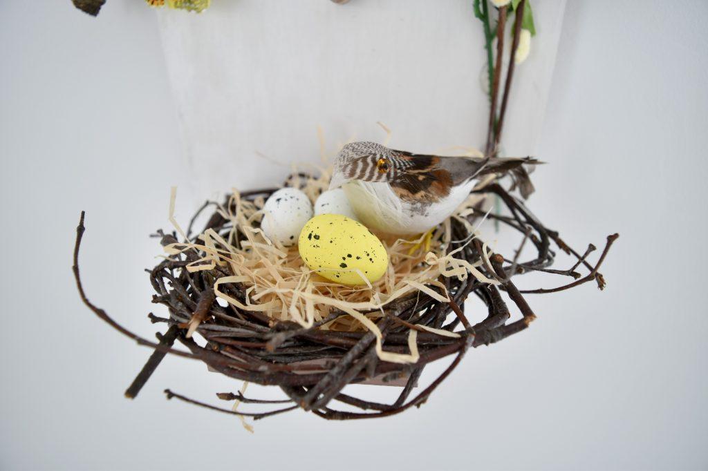 gniazdo dla ptaków