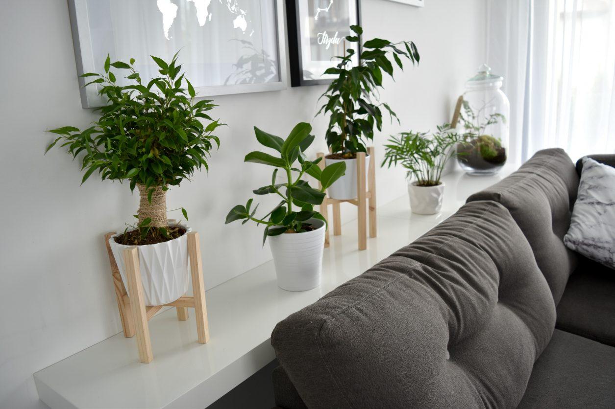 dekoracje DIY